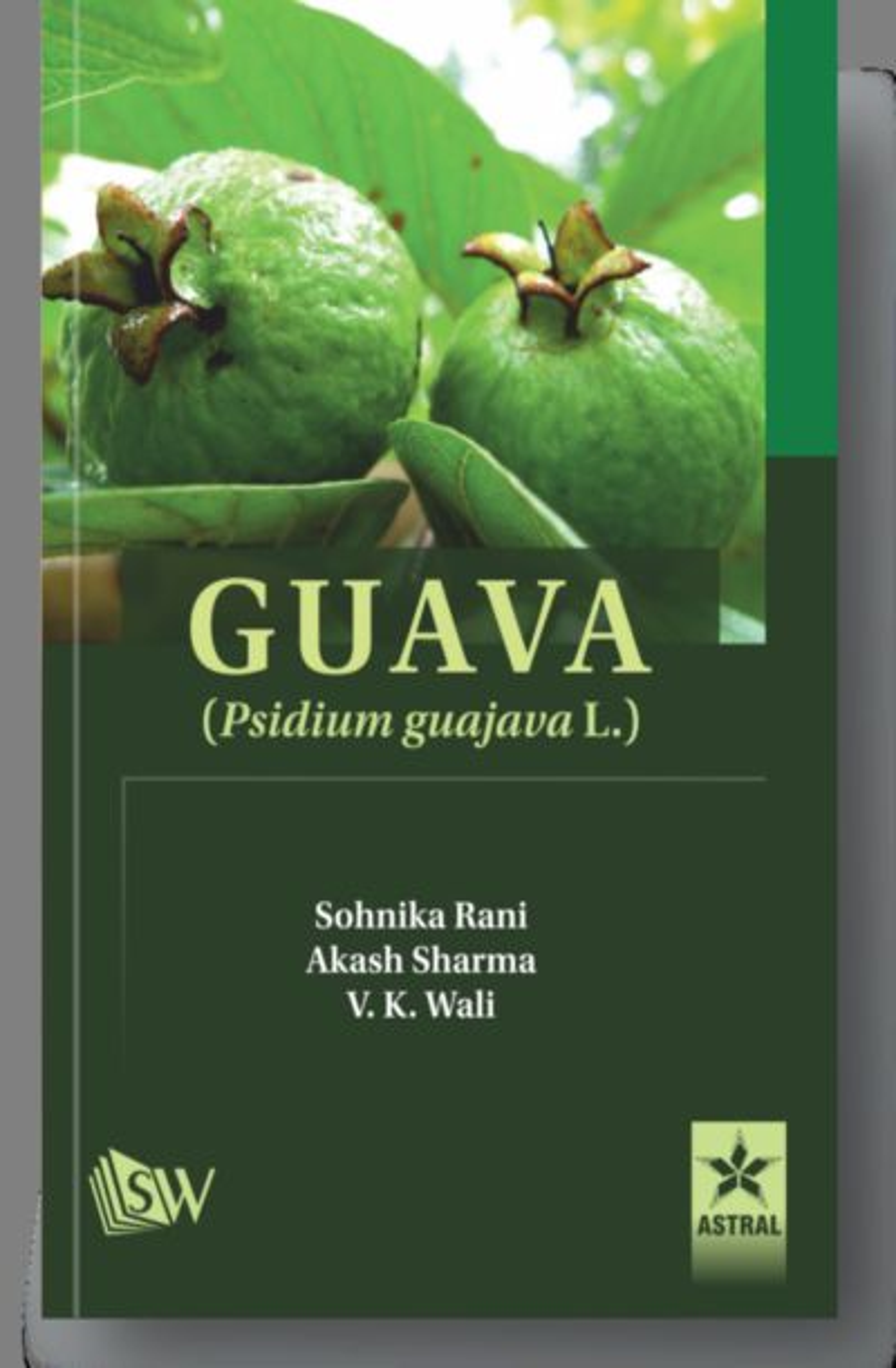 Guava: Psidium Guajava L. By Sharma, Akash, Sohnika Rani & V K Wali